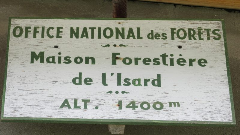Refuge forestier isard-43