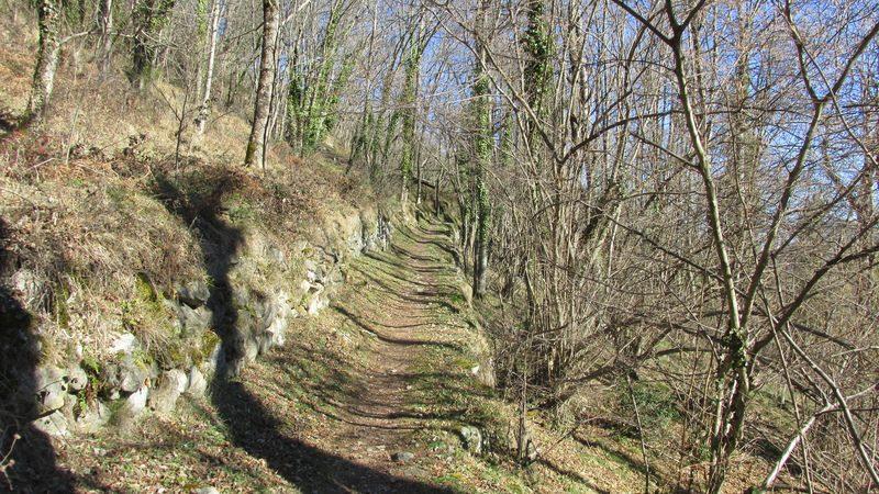2016 01 24 La Soulane Chemin Des Nobits-14
