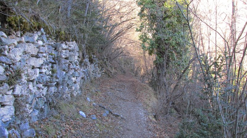 2016 01 24 La Soulane Chemin Des Nobits-20