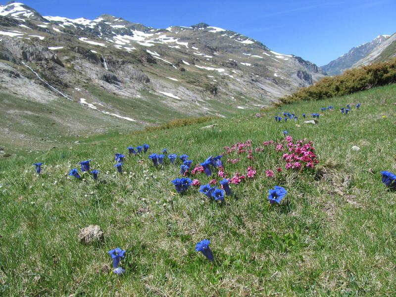 cirque cabane estaube lac barrage gloriettes troumouse gavarnie hautes pyrenees-10