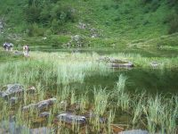 Étang de Labart par le Pic de Cabanatous