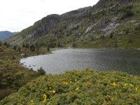 Le Refuge et les étangs de Bassiès par le chemin des mules