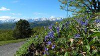 Le Pic Fourcat par le Col de la Gardie et le Rocher de Scaramus