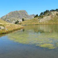 La Bassa le Refuge et les Étangs de Siscaro