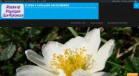 """Cure de Rajeunissement pour Le Blog """"Fleurs & Paysages des Pyrénées"""""""