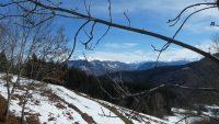 Route Forestiere de Montoulieu