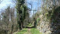 Florilège entre Alliat & Lapège soit entre 560 et 991 mètres d'altitude