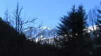 Bois de Siguier